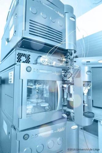 2D NanoAcquity UPLC (Waters)